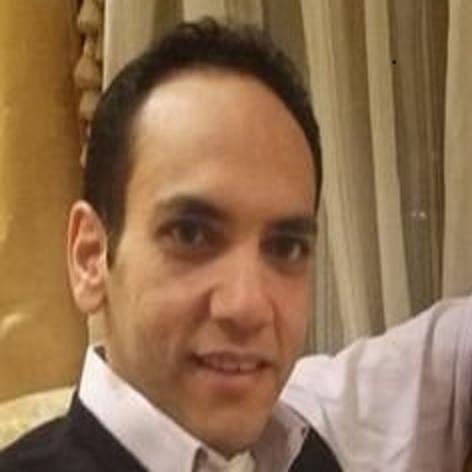 Shady Al-Ghazaly Harb